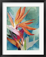 Framed Vivid Birds of Paradise II