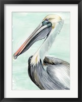 Framed Turquoise Pelican II