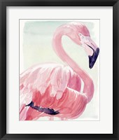 Framed Pastel Flamingo II