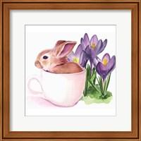 Framed Bunny Crossing I