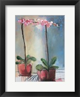 Framed Orchid and Lace I