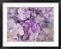 Framed Purple Dream
