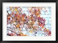 Framed Autumn Leaves 2