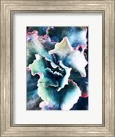 Framed Pink Blue Succulent 1
