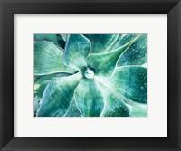 Framed Green Tropical Succulent Beauty 2