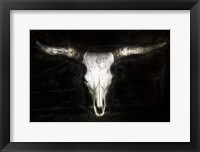 Framed Cow Skull