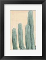 Framed Dusty Cacti I