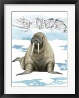 Framed Arctic Animal III