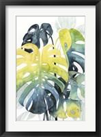Framed Sunset Palm Composition I