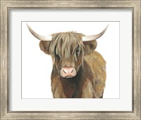 Framed Highland Cattle II