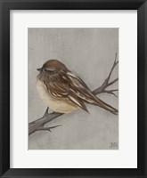 Winter Bird III Framed Print