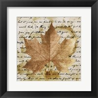 Framed Earth Leaf I
