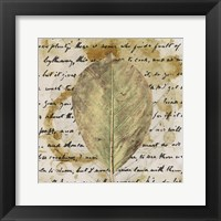 Framed Earth Leaf II