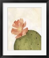 Framed Arid Bloom I