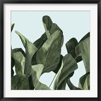 Framed Celadon Palms II