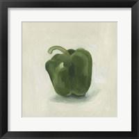 Framed Pepper Study II