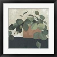 Framed Jade Hoya II