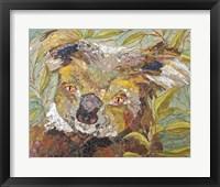 Framed Koala Collage II