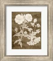 Framed Botanical in Taupe II