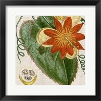 Cropped Turpin Tropicals I Framed Print