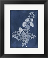 Framed Botanical in Indigo IV