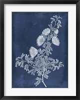 Botanical in Indigo IV Framed Print