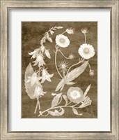 Framed Botanical in Taupe III