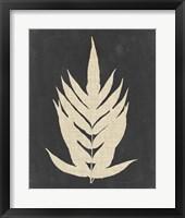 Linen Fern II Framed Print