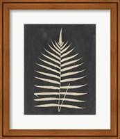 Framed Linen Fern III
