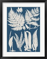 Framed Linen & Blue Ferns I