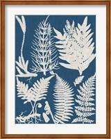 Framed Linen & Blue Ferns II