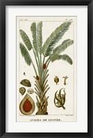 Framed Exotic Palms VI