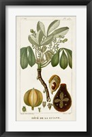 Framed Exotic Palms VIII