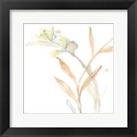 Botany Gesture III Framed Print