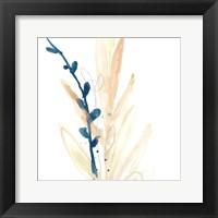 Botany Gesture IV Framed Print