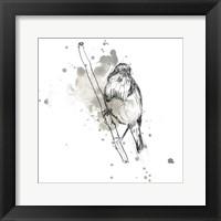 Framed Gestural Bird Study III