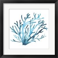Framed Azure Seafan IV