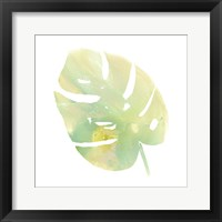 Framed Prisma Tropical I