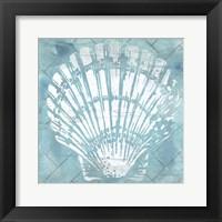 Cerulean Shell I Framed Print