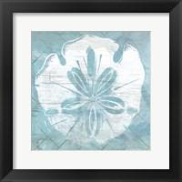 Framed Cerulean Shell IV