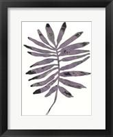 Framed Foliage Fossil I