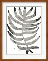 Framed Foliage Fossil IV