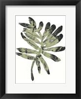 Framed Foliage Fossil V