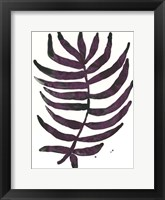 Framed Foliage Fossil VI