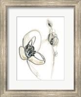 Framed Monochrome Floral Study III