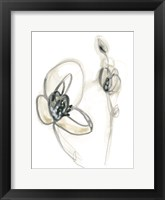 Framed Monochrome Floral Study III