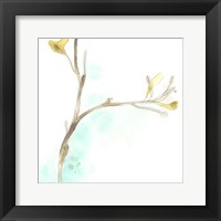 Framed Teal and Ochre Ginko IV