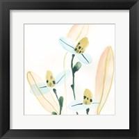 Framed Garden Essence VII