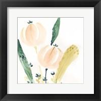 Framed Garden Essence VIII