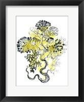 Framed Citron Sea Kelp I